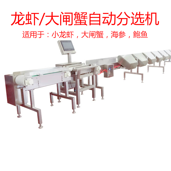 Lobster seafood automatic sorter
