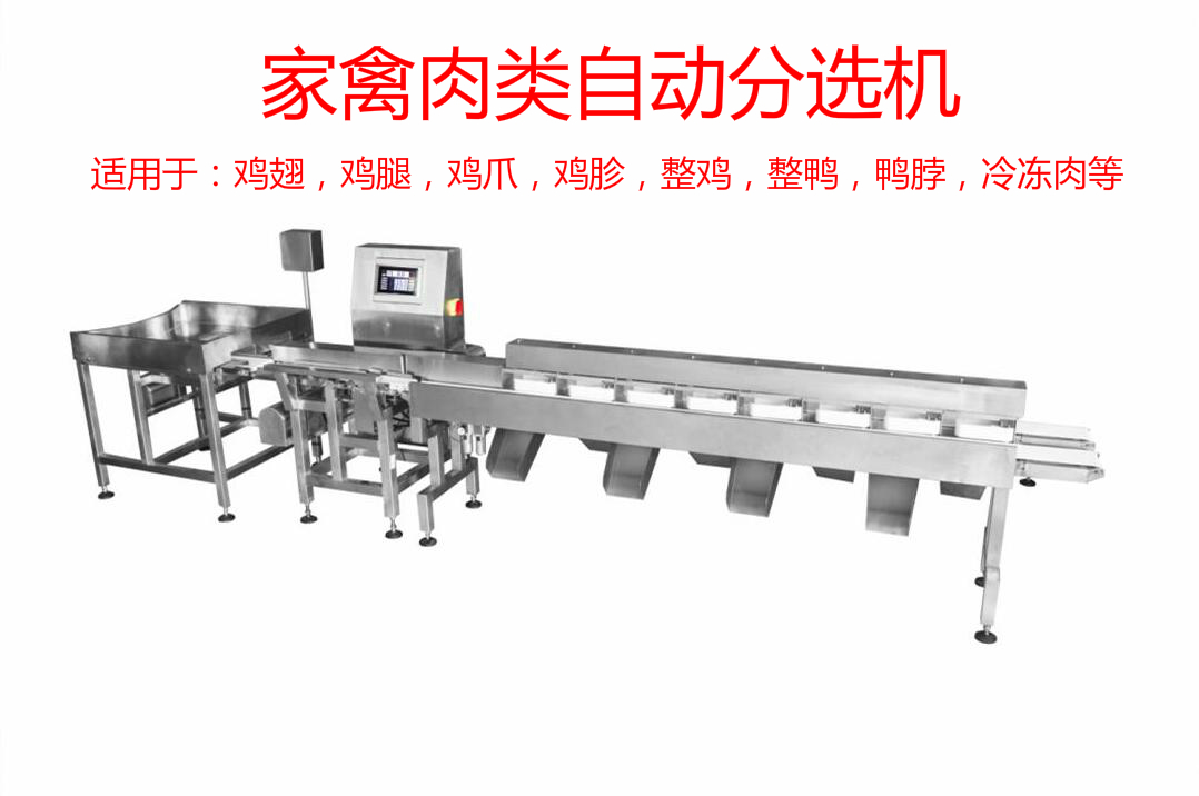 Poultry meat automatic sorter